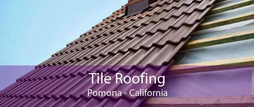 Tile Roofing Pomona - California
