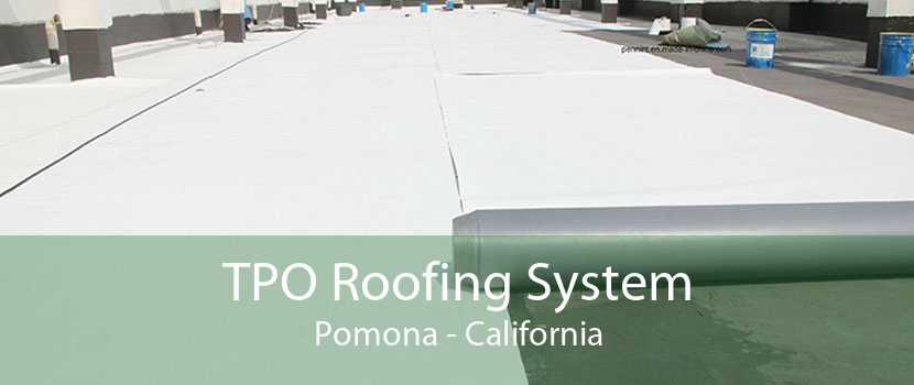TPO Roofing System Pomona - California